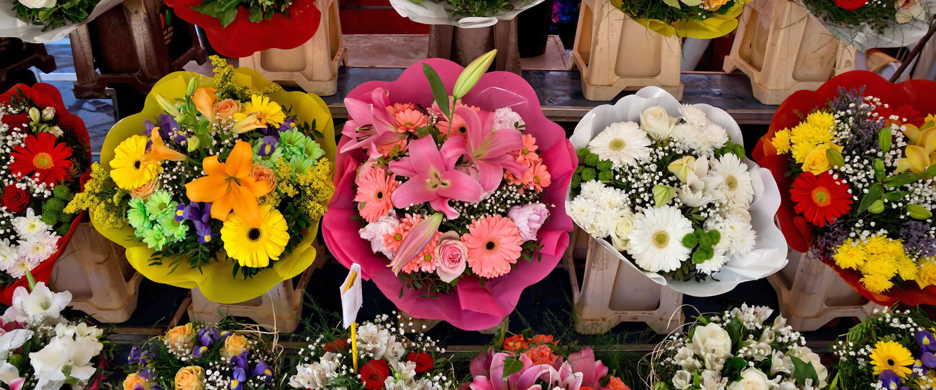 Coastline Flowers - Bay Area Wholesale Flower Bouquet Distributors